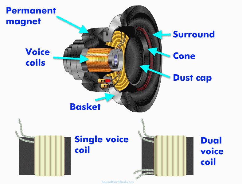What is a dual voice coil speaker exploded view diagram labeled
