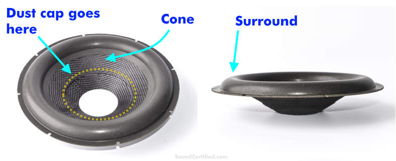 Speaker cone example labeled
