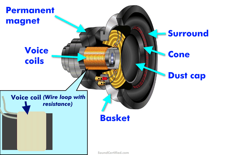 Illustrated diagram of a woofer speaker and its parts (3D exploded view)