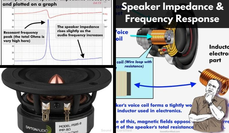 how does speaker impedance compare to frequency response featured image